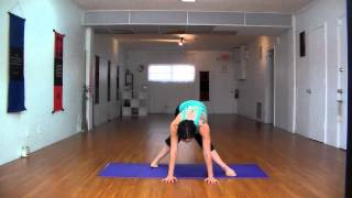 Yoga with Larisa: The Beginner Series; Demo only