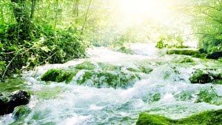 Healing Music, Meditation Music Relax Mind Body, Relaxing Music, Slow Music, ☯2714