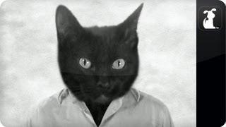 CatNel No. 5 - Brad Pitt Chanel No. 5 Ad #CatNelNo5