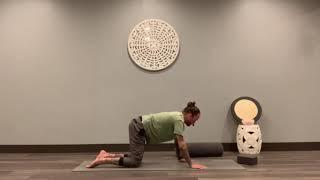 40 Minute Detoxing Yin Practice I Adam Riehl