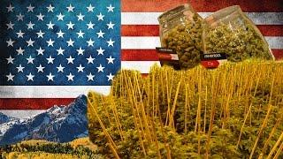 So wird legales Cannabis unter 250.000W angebaut - River Rock Colorado   DHV USA Tour 2015 Part 2/10