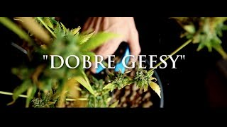 Download Ganja Mafia - Dobre Geesy prod. PSR MP3 song and Music Video