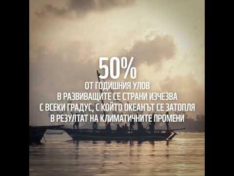 видео: 50 % от рибните запаси ще изчезнат в развиващите се страни