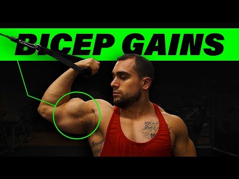 High Cable Curl | Maximize Bicep Growth!