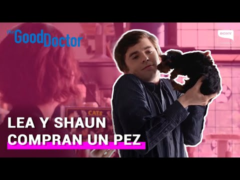 The Good Doctor 2x07: Lea y Shaun compran un pez | Sony Channel Latinoamérica