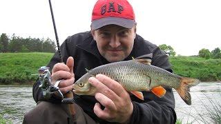 видео Отдых на угре с рыбалкой: рыбалка на реке угра