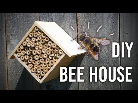 How To Make A Bee House For Your Garden - DIY