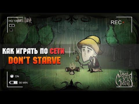 Как играть в Don't Starve Together по сети на пиратке через Hamachi. Как настроить ?