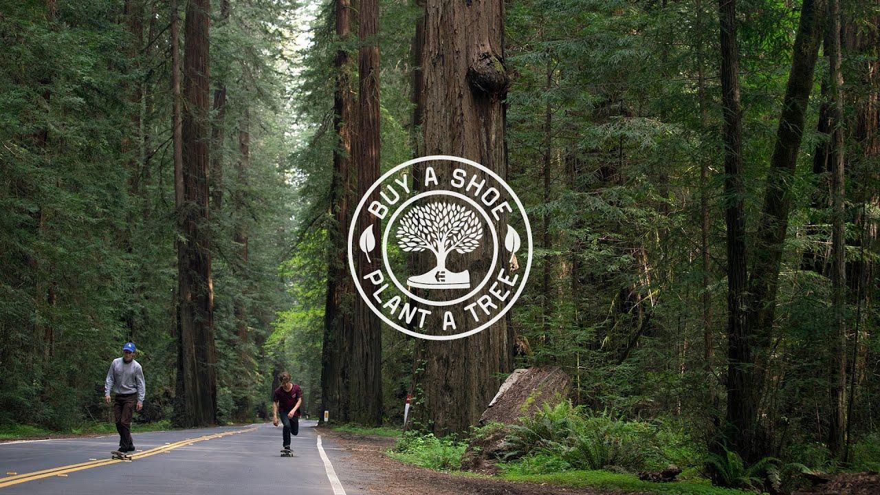 Buy a Shoe, Plant a Tree   2 Million