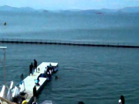 "Subic Ocean Adventure ""The Dolphin and Whale Show' (SMSI Field Trip SY 2012-2013)"