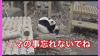 12/9  ステップ3最終日 thumbnail