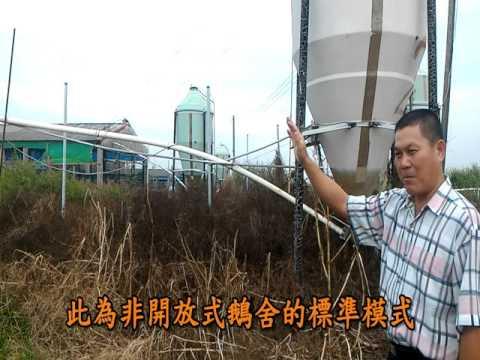 非開放式禽舍示範場-黃翠琴畜牧場(吳癸村)