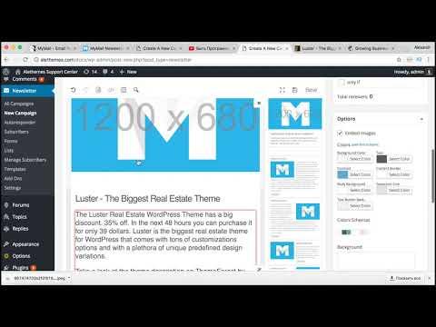 Свой сервис Email рассылки плагин Mailster - Email Newsletter для WordPress