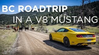 Ford Mustang GT Roadtrip | Driving.ca
