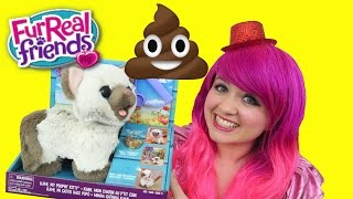Kami My Poopin' Kitty FurReal Friends Cat Eats & Poops | TOY REVIEW | KiMMi THE CLOWN