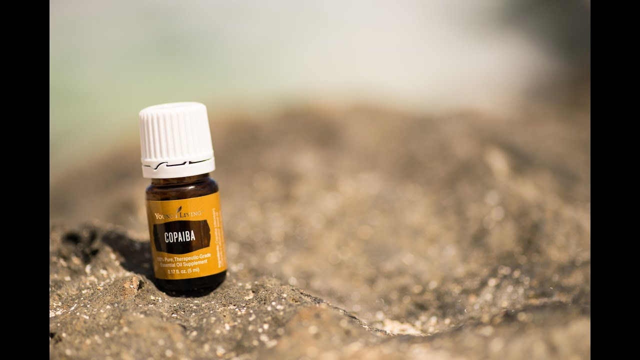 Copaiba essential oil young living youtube for Wohnlandschaft young living