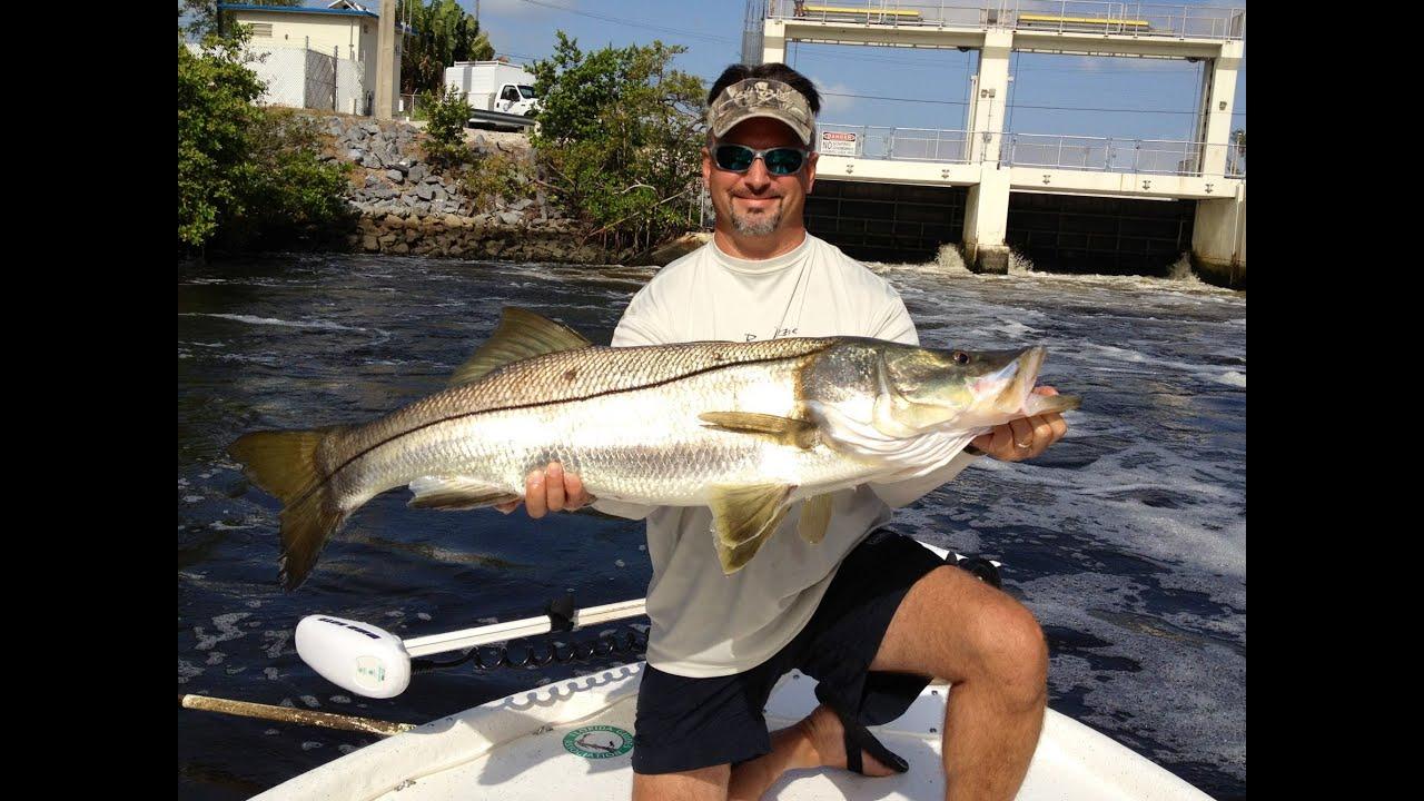 Snookzilla monster snook fishing florida youtube for Florida fishing license lookup