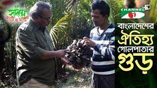 বাংলাদেশের ঐতিহ্য গোলপাতার গুড় | The tasty and Rare Nipa alm juice | Shykh Seraj | Channel i |