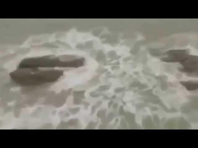 ????????????????????????? ?????????? (A mermaid swim in the sea. )