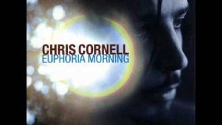 Sunshower - Chris Cornell - Euphoria Morning (1999)