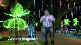 Llego navidad / Arialdo Mogollón