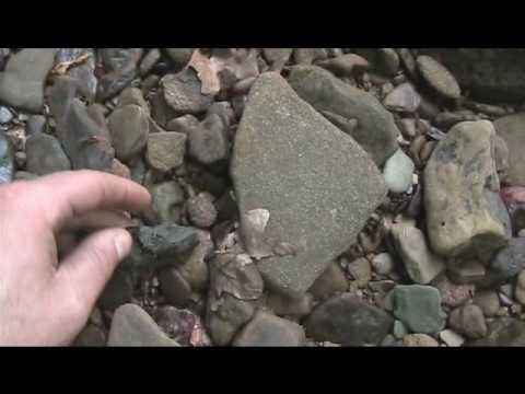 West Virginia creek hunt
