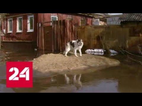 Актарск затопило: в Саратовской области вода продолжает прибывать - Россия 24