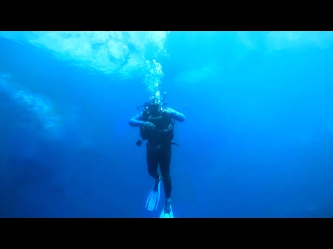 What Lies Beneath? Scuba Diving in Zimbabwe