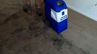 Saving a Ruined Carpet with a Rug Doctor X-3
