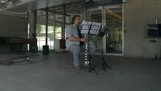 Lunsqui After Telluris (solo bass clarinet: Luiz Eugênio Afonso Montanha)