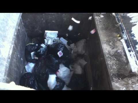 Monster Trash Compactor (Stowe Dump)
