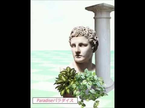 ロマーンRoman - Paradiseパラダイス CASSETTE RIP