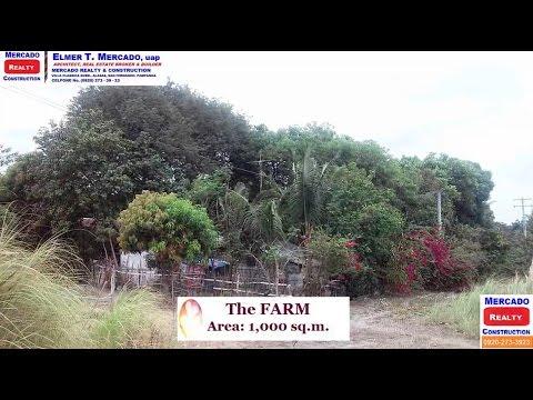 Farm for Sale in Maimpis City San Fernando Pampanga