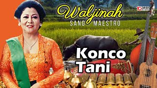 WALJINAH - BW Dandang Gulo Konco Tani