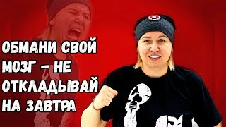 Светлана Андреева БОКС спорт в удовольствие или обмани свой мозг начни сегодня