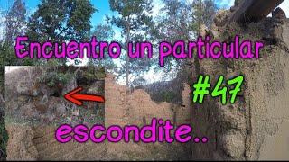Detección en una Casa en Ruinas con un particular Escondite a los pies de un gran Árbol