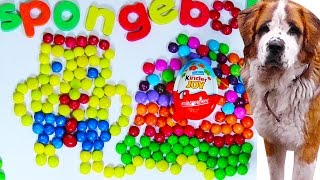 Kinder Surprise Egg Learn-A-Word! Spelling Words Skittles Candy! Lesson 3