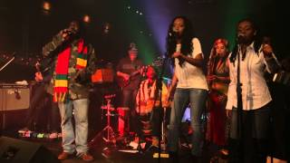 CHEZIDEK live in Quebec City 2013 Part 1: freedom fighter, one family