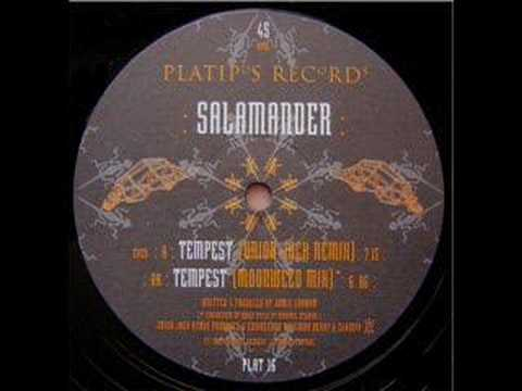 Salamander - Tempest (Union Jack Remix) CLASSIC ACID TRANCE 1995