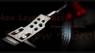 DJ Shadow ~Broken Levee Blues