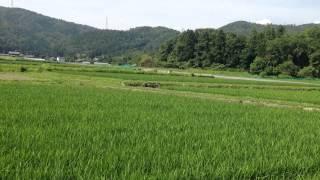 140702②つぶやき農家の現状.