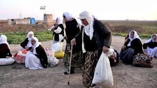 Езидские переселенцы рассказали, как бежали от ИГИЛ (новости)