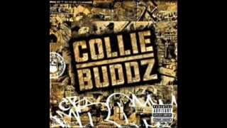 Collie Buddz - Burn Down the System (With Lyrics)