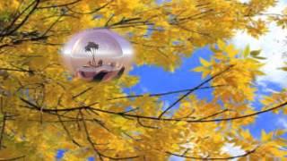 Бесплатные видеоуроки.Осень