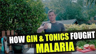 How Gin & Tonics fought Malaria | Drink Like A Sailor