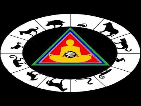 Capricorn and the astrological wheel: santos bonacci