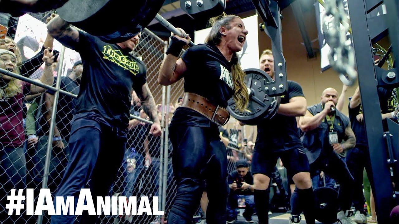 I Am Animal