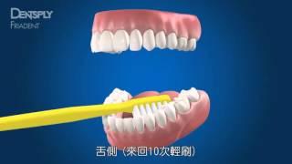 貝氏刷牙法