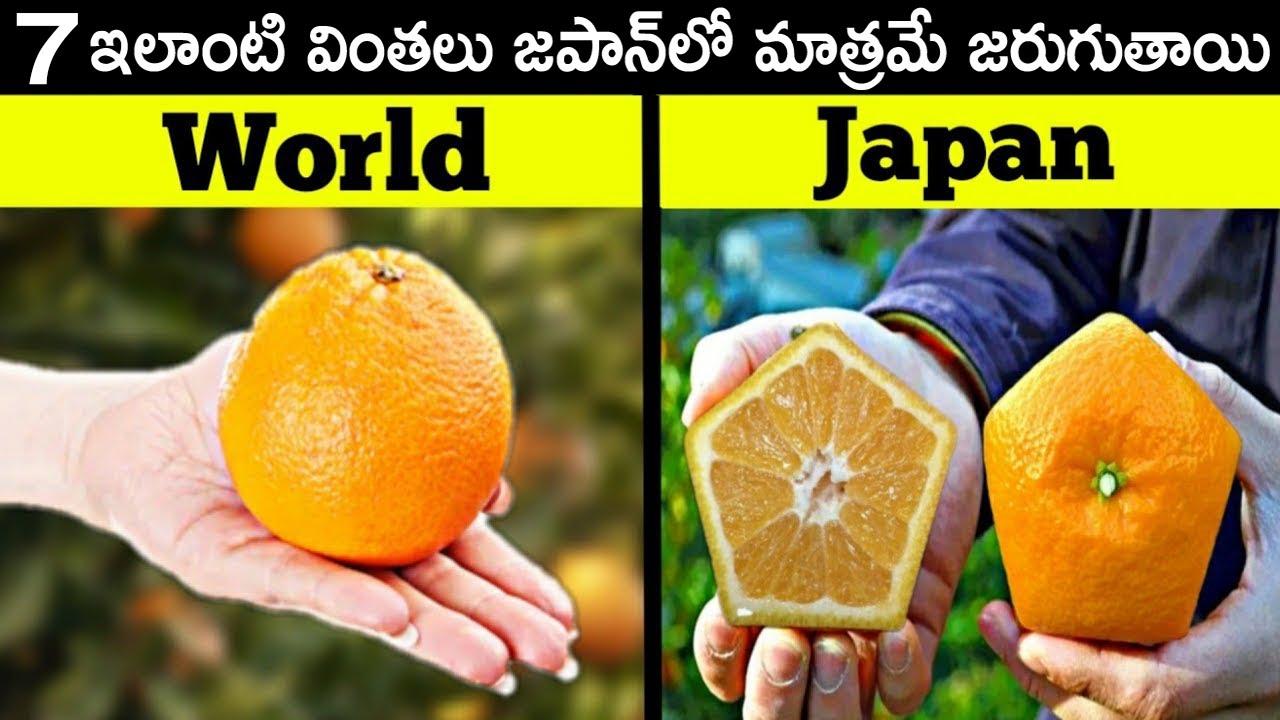 ఇలాంటివి జపాన్ లో మాత్రమే చూస్తారు! 7 Things Only Happen in Japan | Telugu Brain