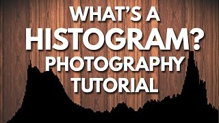 How To Read A Histogram | Photography Tutorial